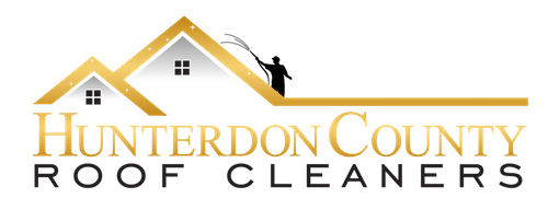 Hunterdon County Roof Cleaners